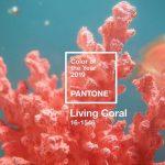 Living coral: conheça a cor Pantone 2019 e veja como ela já está sendo usada