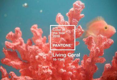 A Pantone lançou, para 2019, a cor Living Coral