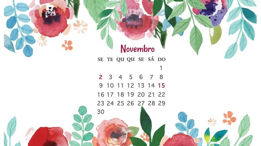 datas especiais de novembro