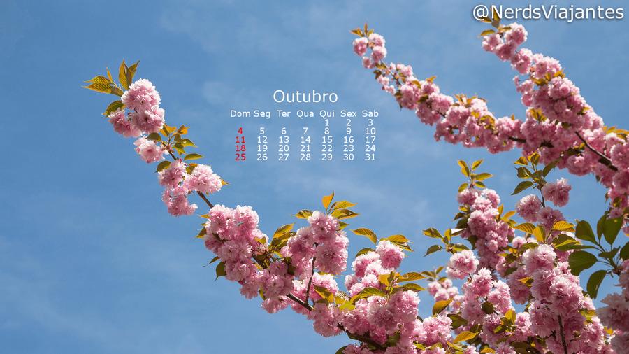 datas especiais de outubro para celebrar