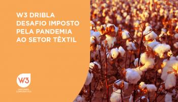 algodão simboliza desafio da pandemia - imagem ilustrativa para texto sobre desafios da pandemia no setor têxtil